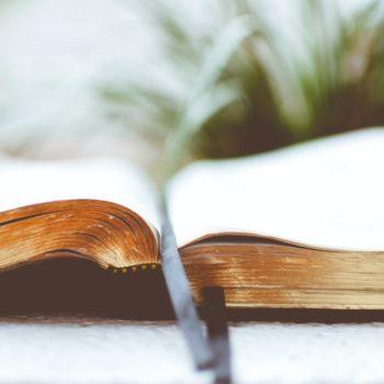 5 Steps towards Publication