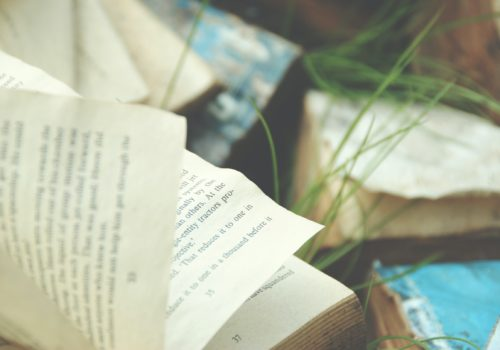 5 Ways the Publishing Industry Can Have a Better Impact on the Environment